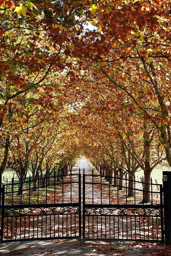 Autumn Gateway by Clare McClelland
