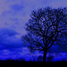 Rainy Day Blues by Andy Harris