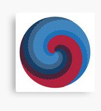 Whirligig 2 Canvas Print