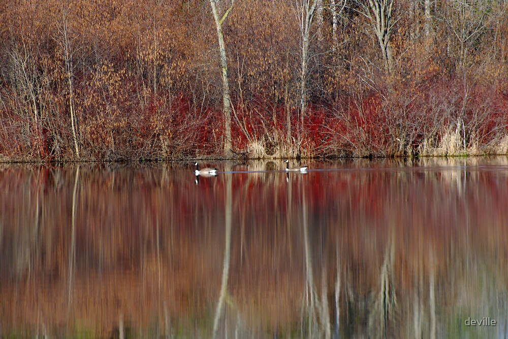 on  a golden pond by deville