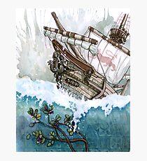 Wem Pirate Photographic Print