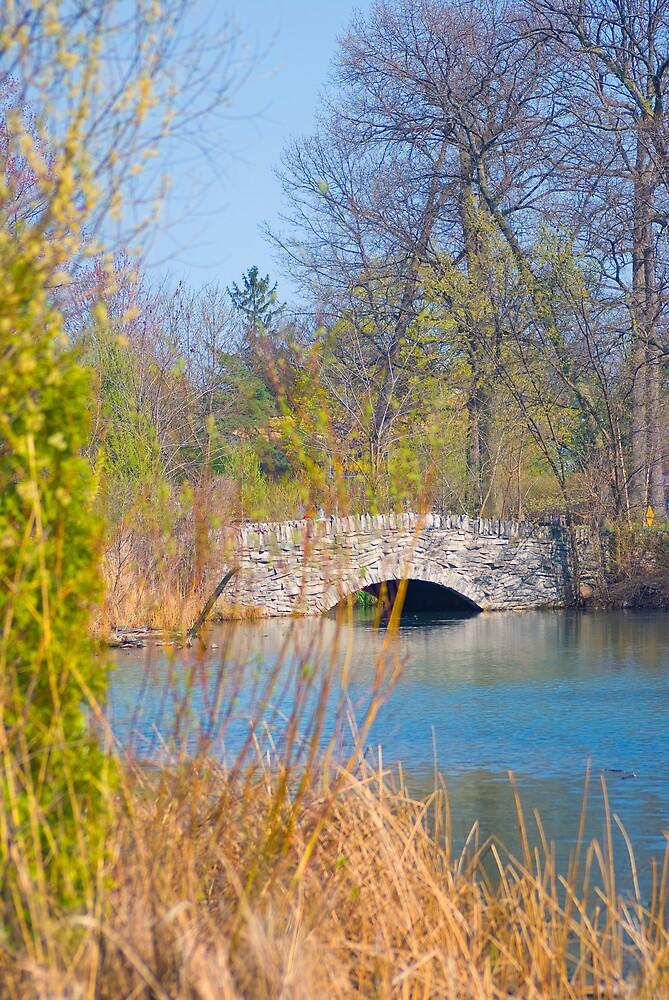 Stone Bridge by BarbHoffman