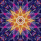 Paradise Pinwheel by haymelter