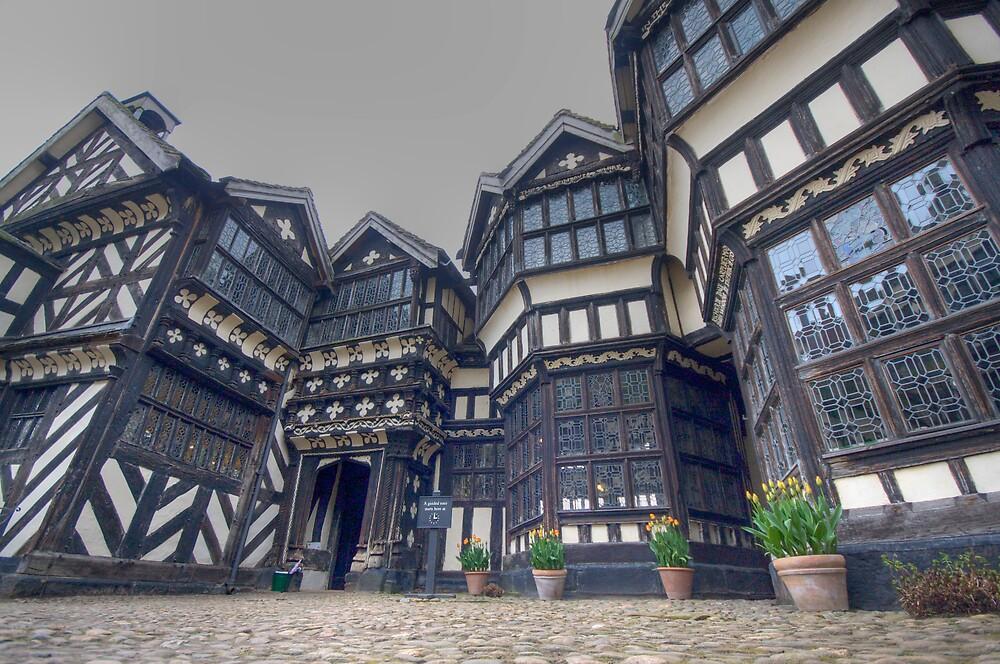 Tudor Delight by NalaRewop