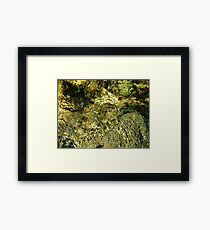 Moving Water,,,, Framed Print