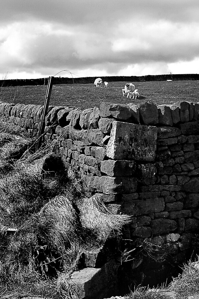 A Corner of Yorkshire by Alison Edge