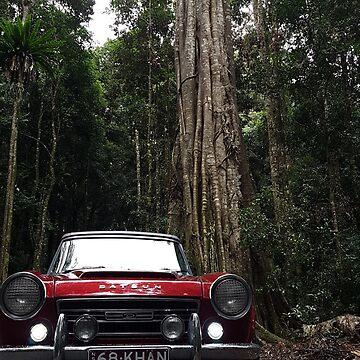 Rainforest Fairlday by khanzie