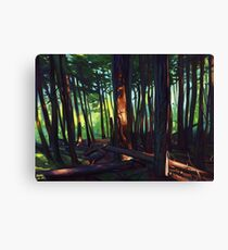 The Summer Lights of British Columbia Canvas Print