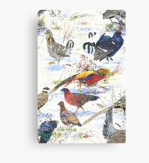 Galliformes! Canvas Print