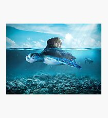 Tortue Photographic Print