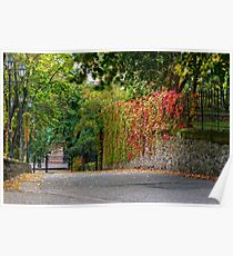 autumn cityscape after rain, with yellowed trees and street lamps Poster