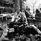 Mighty Treefolk by lemontree