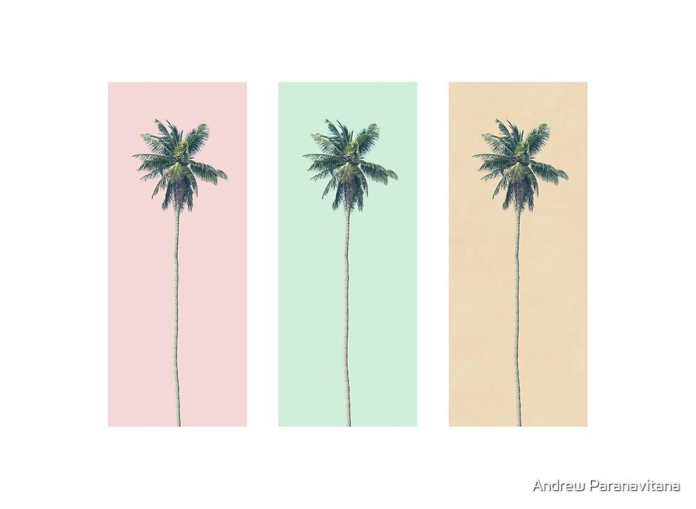 Retro Palms by Andrew Paranavitana