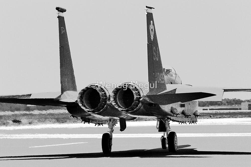 Jet Fighter by Wendy Mogul