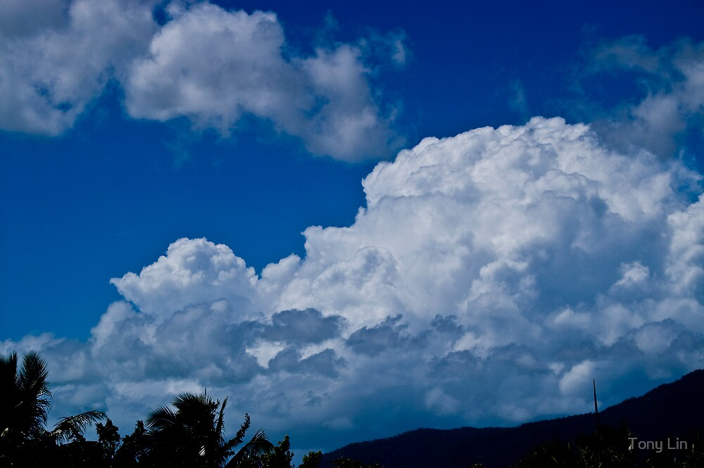 Images of the Tropical Far North Queensland pic 38 by Tony Lin