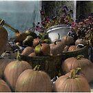 Longview Farm Pumpkins and Flowers by Wayne King