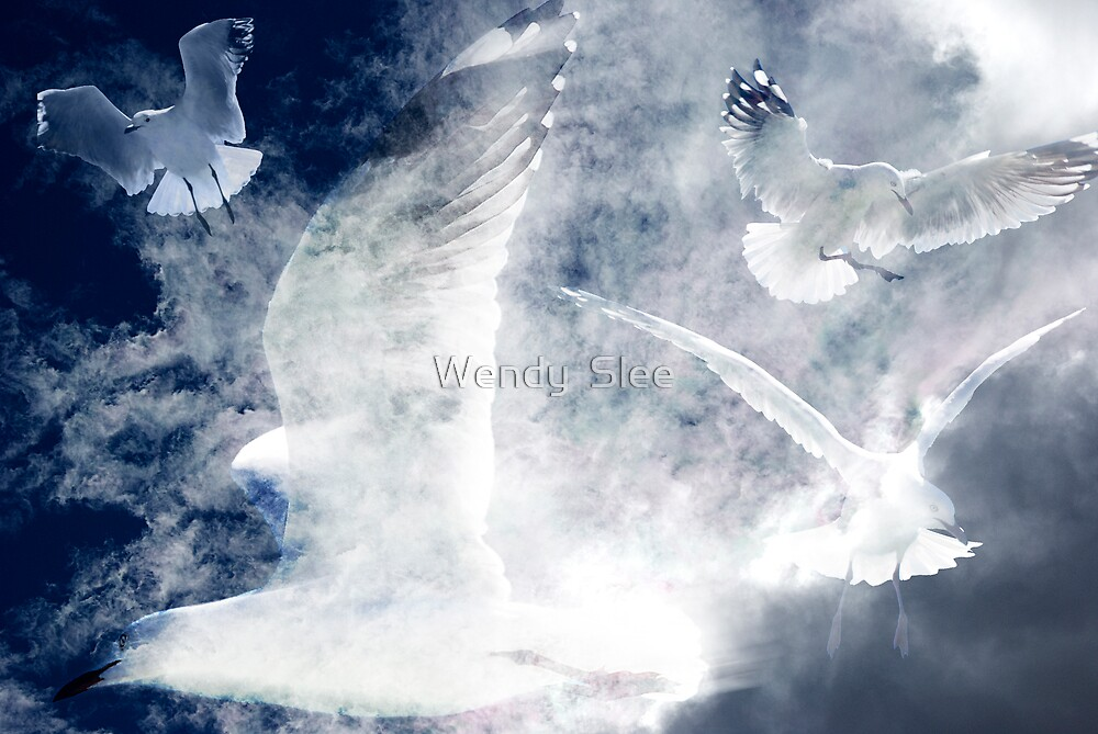 Freedomsong by Wendy  Slee