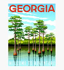 Georgia, USA, State, nature, spring, tree, vacation, travel, poster Photographic Print