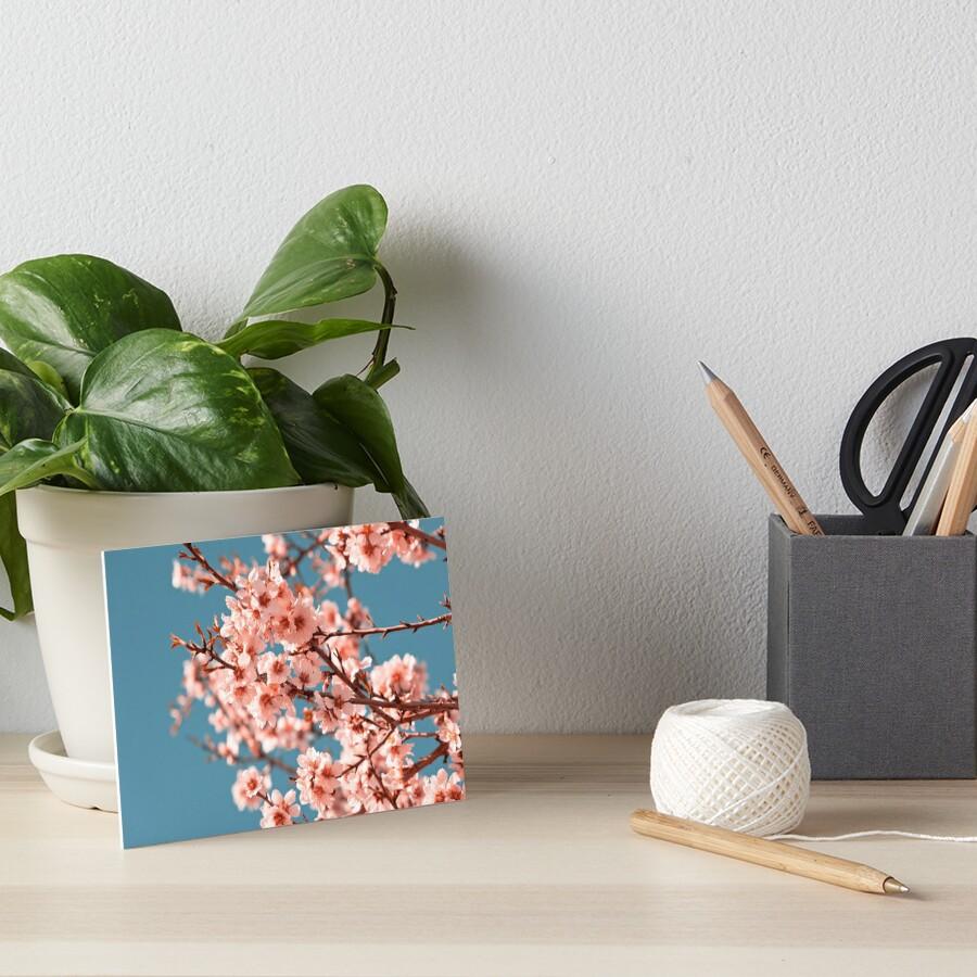 Rosa blühender Pfirsichbaum der Blumen am Frühling Galeriedruck