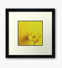 Single yellowflower Framed Print