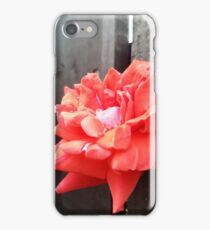 Flower on the Fence iPhone Case/Skin