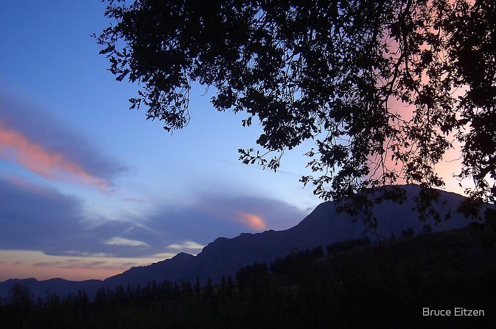 Oak sunset by Bruce Eitzen