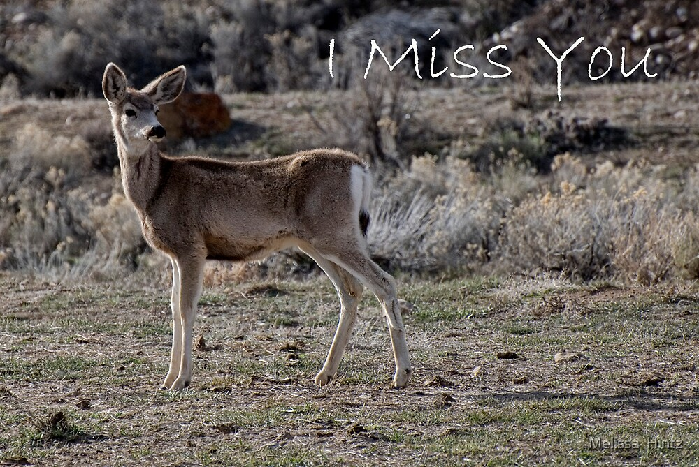 Miss You  by Melissa  Hintz