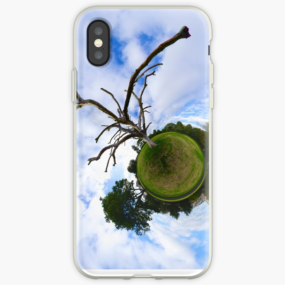 Dead Elm Tree in Brooke Park, Derry iPhone Cases & Covers