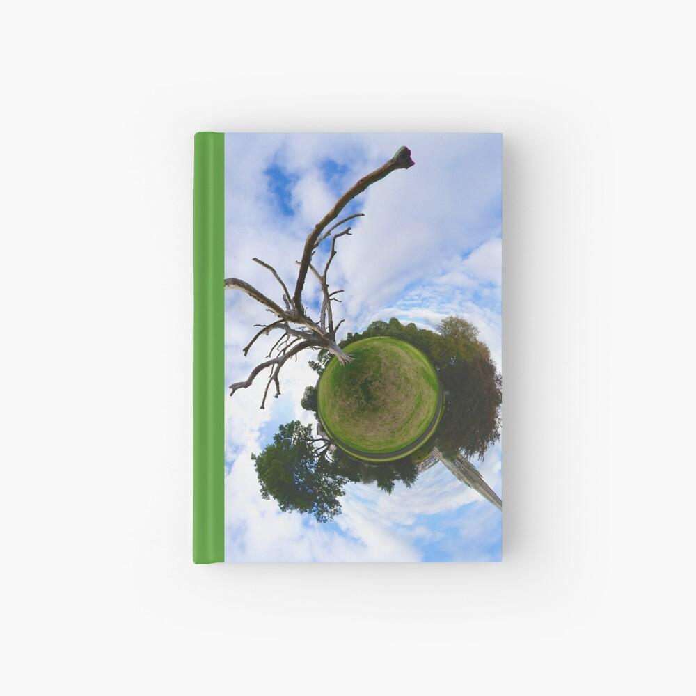 Dead Elm Tree in Brooke Park, Derry Hardcover Journal