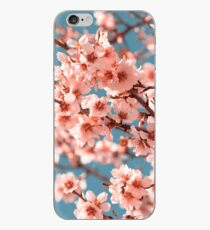 Pink Flowers Blooming Peach Tree at Spring iPhone Case