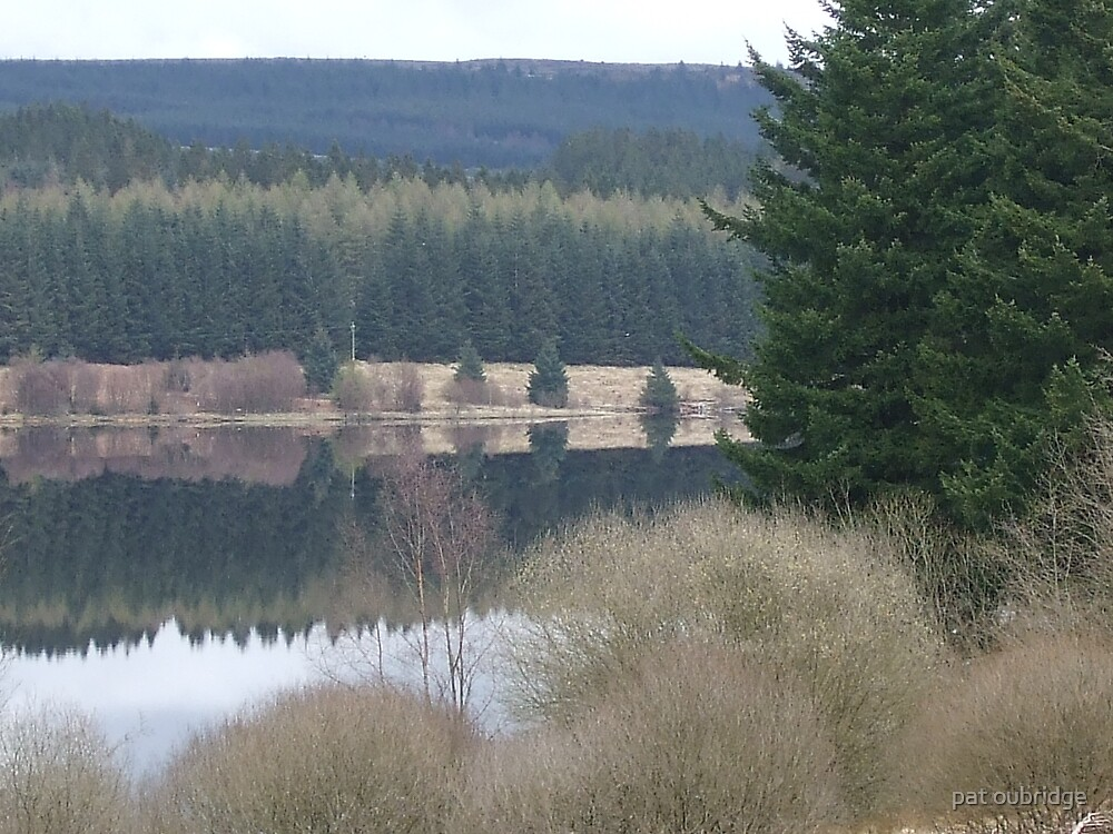 Reflections by pat oubridge