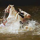 A Good Splash at Appleby Horse Fair. by Billlee