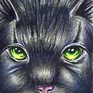 Warrior Cats Hollyleaf Hollypaw by moonphiredesign