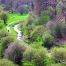Almondell View by Tom Gomez