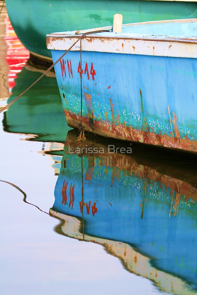Reflections everywhere by Larissa Brea