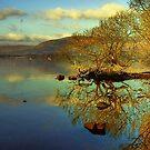 Loch Lomond HDR by Stevie Mancini