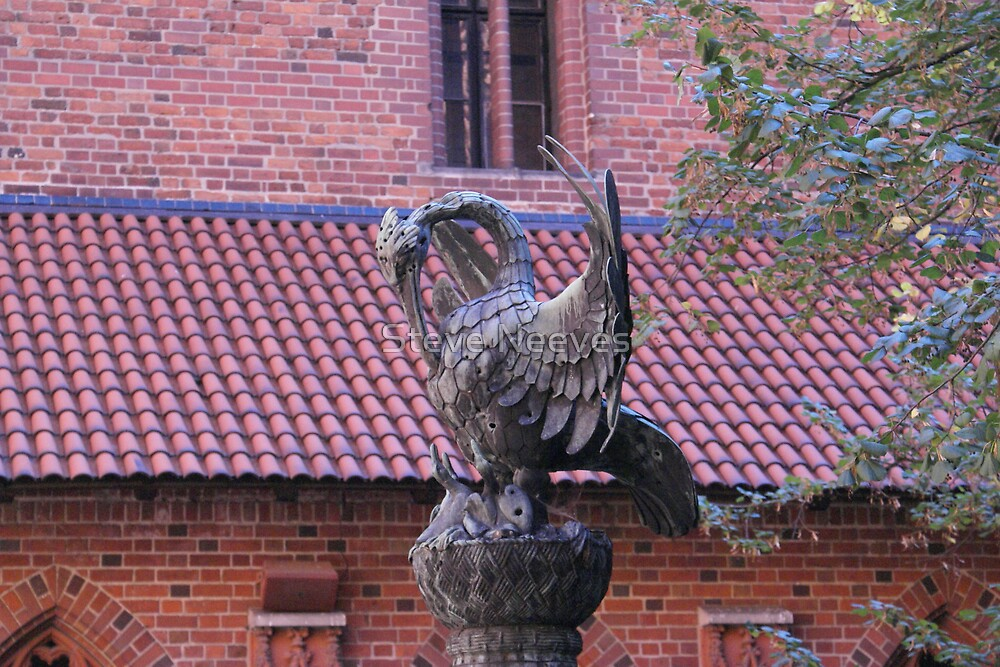 Eagle statue  by Steve Neeves