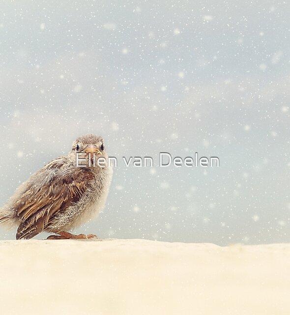 Young Sparrow by Ellen van Deelen