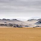 Pampa de los Gamonales, II by Iris MacKenzie