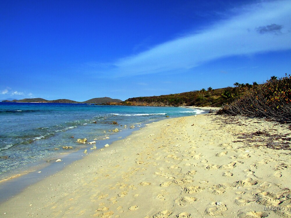Lonely beach by antonio