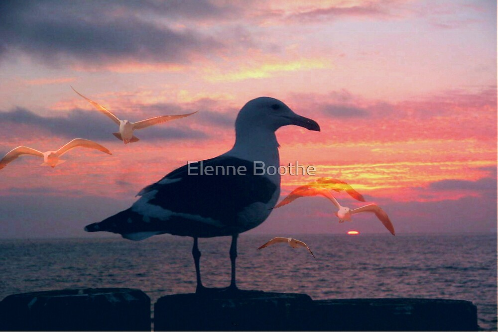 DON'T WORRY by Elenne Boothe