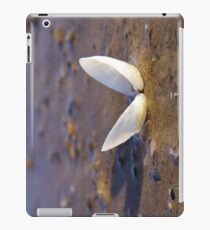 Cockle Shell  in Evening light at Fahan iPad Case/Skin