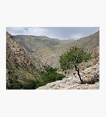 Sentab Valley, Uzbekistan Photographic Print