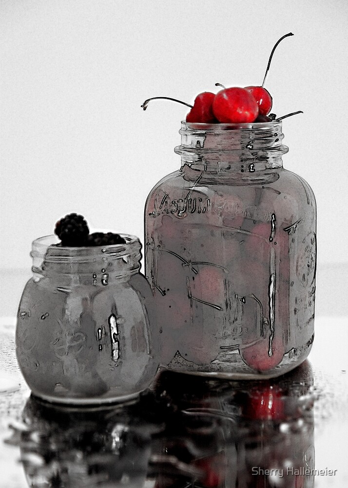 Homemade Jams and Preserves by Sherry Hallemeier