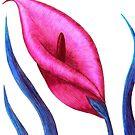 Dream Lily by Stephanie Rachel Seely