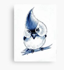 Titmouse In Blue Canvas Print
