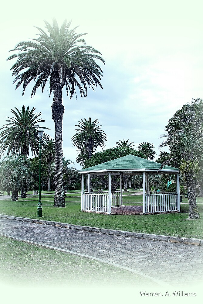 Palm Tree Garden by Warren. A. Williams