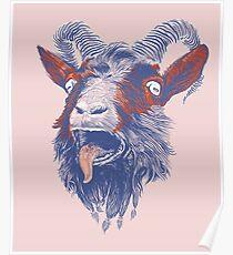 Rock Goat Poster