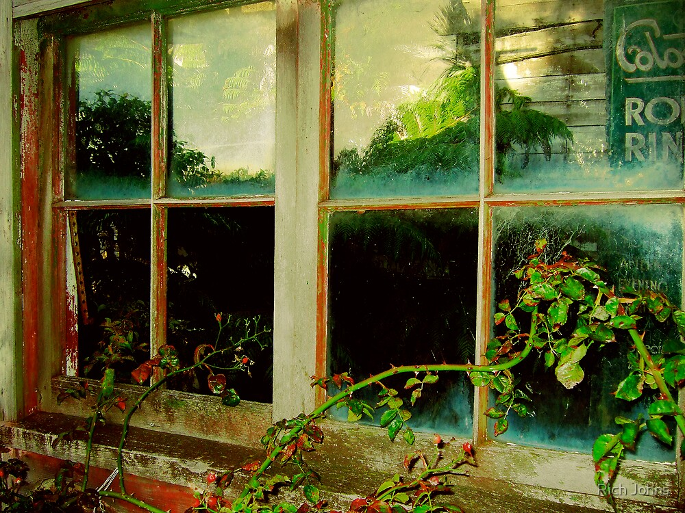 Outside Looking In by Rich Johns