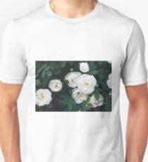 Close-up of white garden roses. Macro shot. T-Shirt